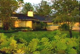 goldenhouse2.jpg